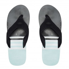 Animal Jekyl Swim Flip Flop Clearwater Blue